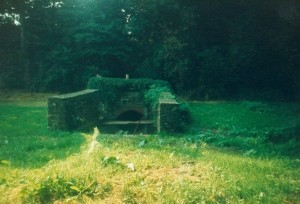 Higgin's well