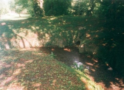 Emma's well