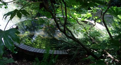 http://www.badwitch.co.uk/2009/08/sacred-spring-at-st-blaises-well.html