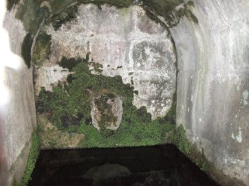 St Oswald's Well Oswestry (7)