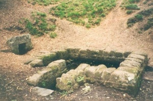 St anthonys well cinderford