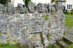 St Beuno's Well and cave Treimeichion (6)