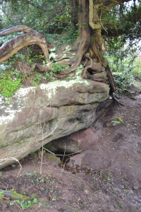 Lady's Well Wombourn (9)