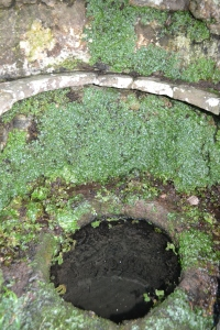 St Anne's Well Trellech (7)