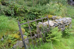 Saint Peris's Well Nant Peris (14)