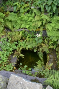 Saint Peris's Well Nant Peris (8)