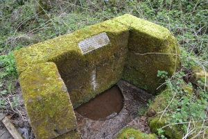 St Kenelm's Well Clent (77)