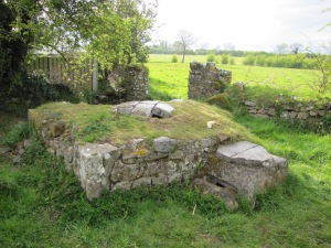 St. Patrick's Well, Carlanstown