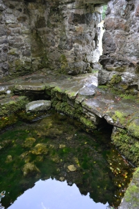 St Cybi's Well Llangybi (126)