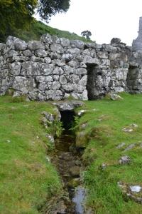 St Cybi's Well Llangybi (45)