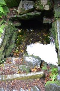St Cybi's Well Llangybi (63)