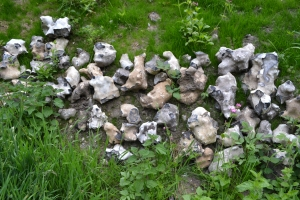 St Walstan's Well Costessey (13)