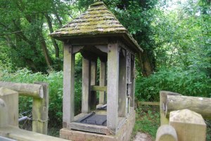 Holy Well Dunsfold © Copyright N Chadwick and licensed for reuse under this Creative Commons Licence.