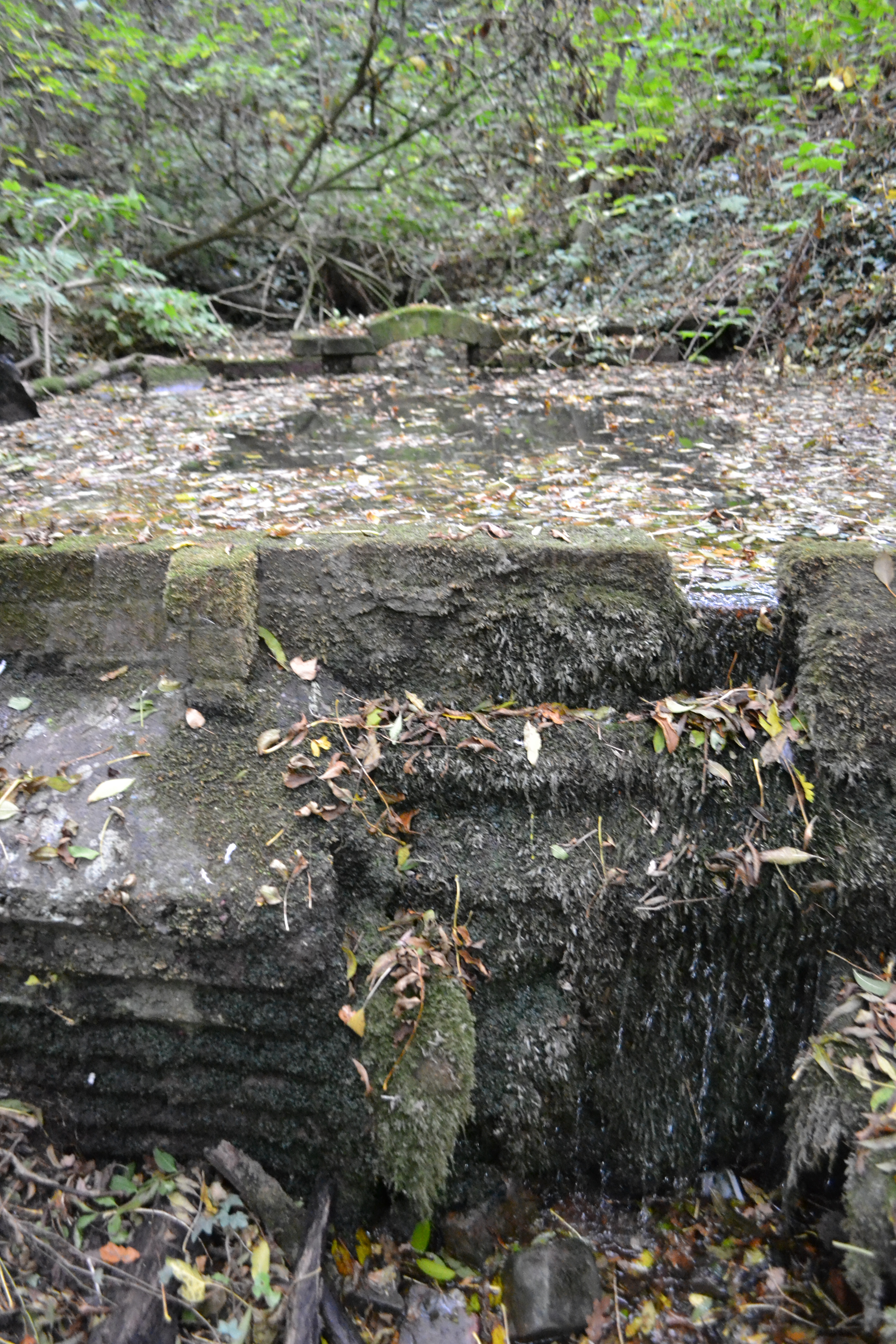 Ashby De La Zouchs Forgotten Holy Well